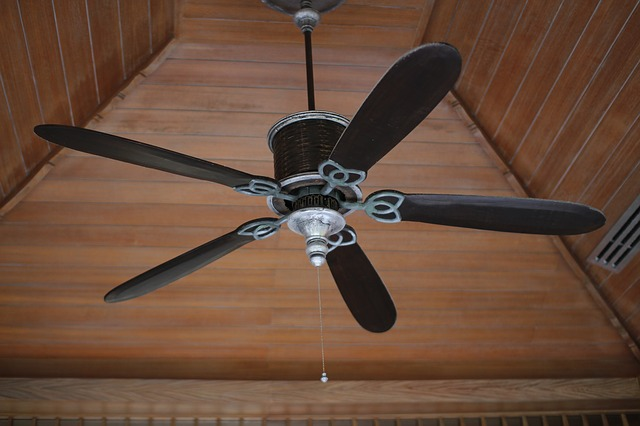Factors to Consider Before Getting a Black Ceiling Fan